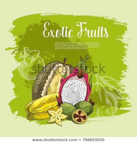Pomelo Exotic Fruit Vector Tropical Food Poster Stock photo © robuart