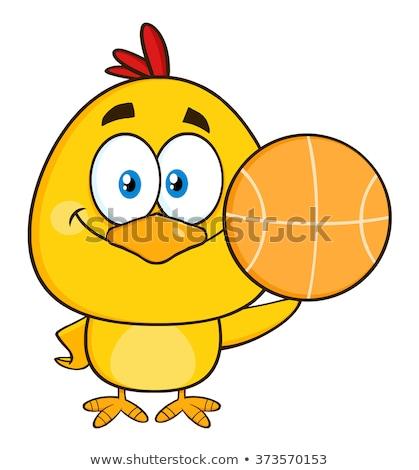 Cute giallo chick basket Foto d'archivio © hittoon
