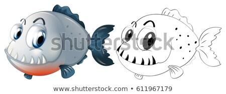 Animal piranha peixe ilustração natureza fundo Foto stock © colematt
