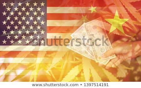 United States Cannabis Concept Stock photo © Lightsource