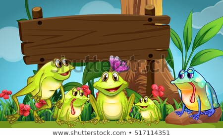 Wooden board and frogs in the field Stock photo © colematt