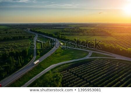 Stok fotoğraf: Yol · güzel · bahar · orman · gün · batımı