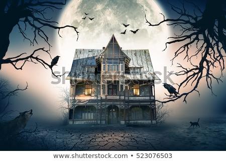 Jelenet kisértetjárta ház éjszakai jelenet éjszaka illusztráció Stock fotó © colematt
