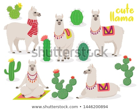 Set of cute llamas in different poses, desert with cactus Stock photo © MarySan