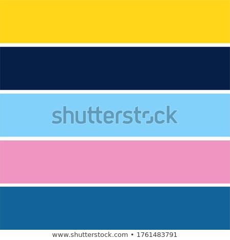 Elegante sin costura geométrico rosa a rayas patrón Foto stock © ExpressVectors