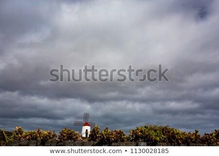 Wiatrak Hill niebieski mętny niebo piękna Zdjęcia stock © dashapetrenko