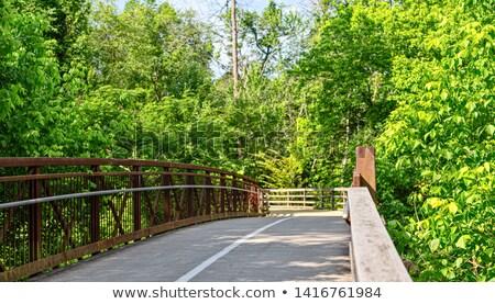 piedi · escursioni · percorso · boschi · alto · alberi - foto d'archivio © mackflix
