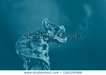 barbudo · dragão · cabeça · isolado · branco - foto stock © calvste