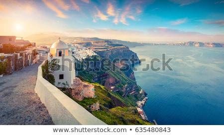 Santorini voorjaar mooie bloemen ochtend strand Stockfoto © kwest