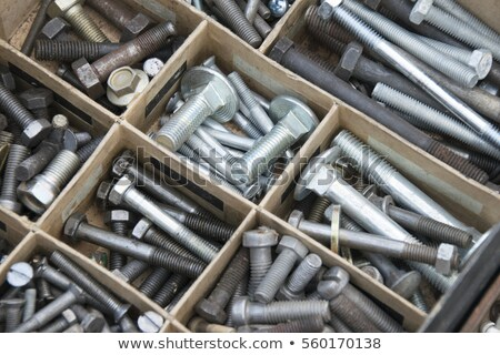 Stock fotó: Old Screws And Bolts Organzied
