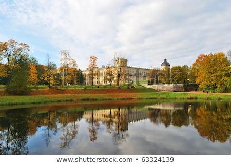осень красивой деревья озеро синий листьев Сток-фото © Estea