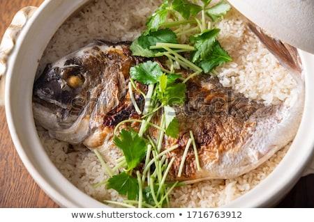 sea bream closeup stock photo © Antonio-S