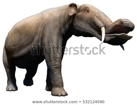 Platybelodon: Prehistoric Elephant Stock photo © AlienCat