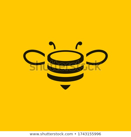 Mel de abelha moeda antigo grego símbolo deusa Foto stock © sifis