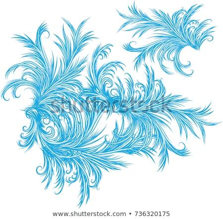 Fagyos minták kék hópehely absztrakt terv Stock fotó © ElenaShow