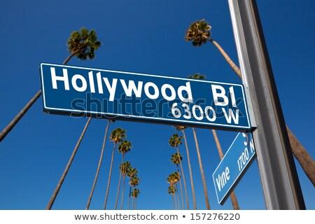 Hollywood sokak işareti palmiye ağaçları ağaç sokak Stok fotoğraf © meinzahn