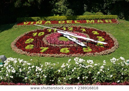 large flower clock in switzerland stock photo © dacasdo