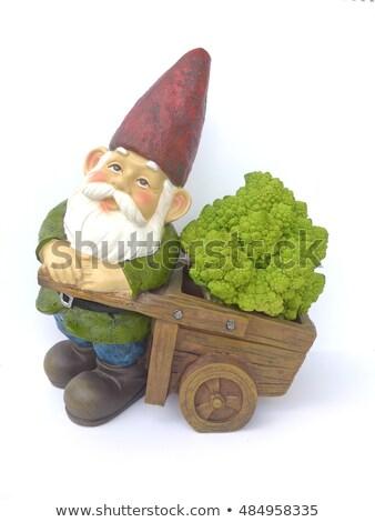 Many Garden Gnomes Stock photo © searagen