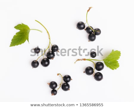 raspberries and black currant  Stock photo © Masha