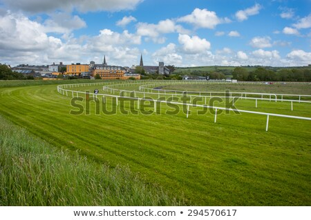 Race course on green landscape Stock photo © zzve