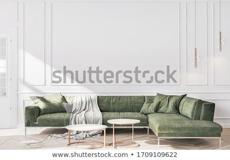 Moderne woonkamer heldere groene deur ontspannen Stockfoto © podsolnukh
