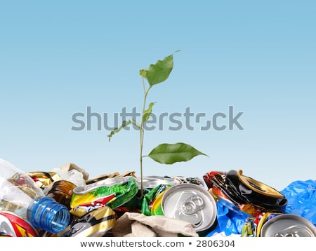 New life. Plant on the cans recycle Stock photo © REDPIXEL