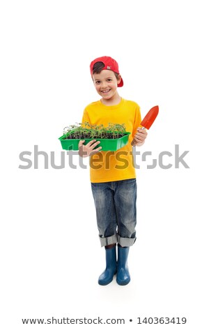 Young boy with seedlings ready for gardening Stock photo © ilona75
