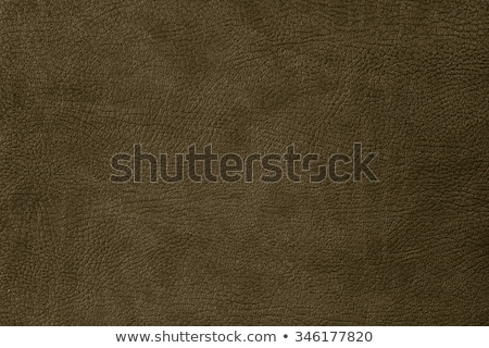 dark grunge scratched leather to use as background Stock photo © tarczas