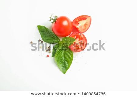 Tomate basilic feuille isolé blanche vert Photo stock © natika