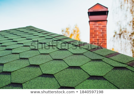Green corrugated tile element of roof Stock photo © LoopAll