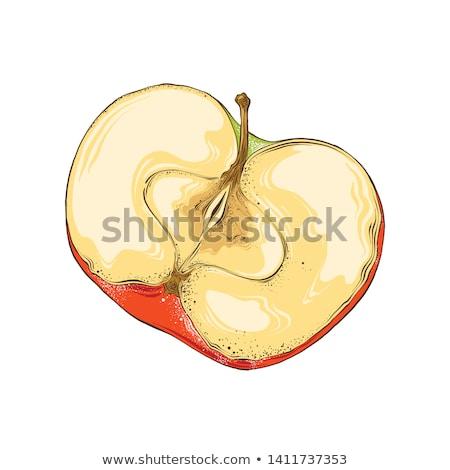 elma · yeme · organik · altı · adımlar · meyve - stok fotoğraf © gemenacom