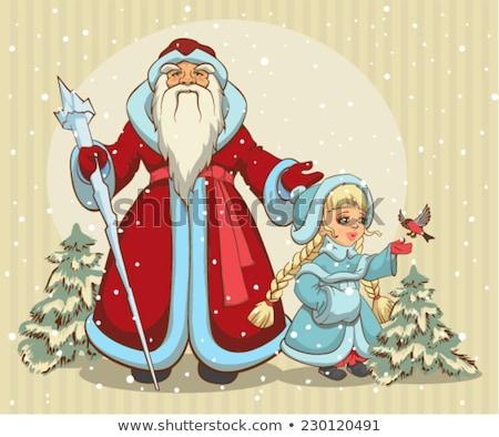 Sneeuw Blauw pels illustratie vector Stockfoto © orensila