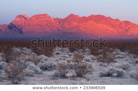 Providence Mountains Fountain Peak Mojave Desert Landscape Stock photo © cboswell