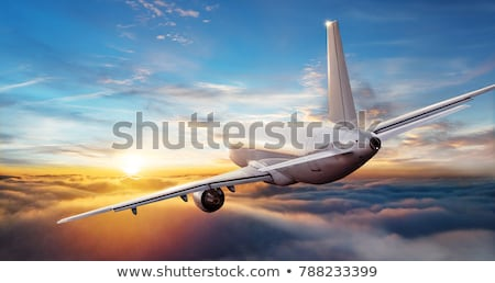 passenger airplane in cloud Stock photo © ssuaphoto