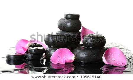 black spa stones and pink rose with petals isolated on white stock photo © tetkoren