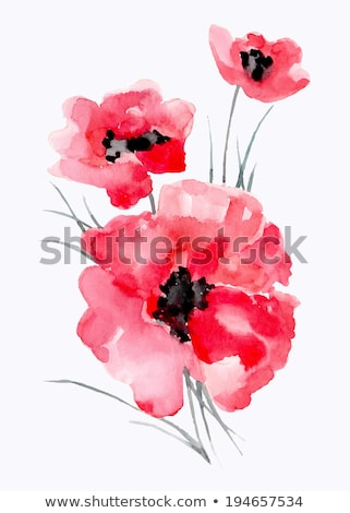 abstract · Rood · poppy · behang · voorjaar · ontwerp - stockfoto © netkov1
