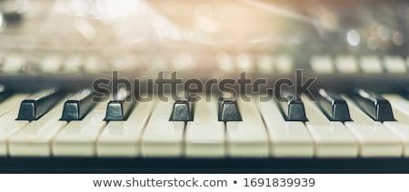 Gyönyörű zongorista fiatal nő játszik zongora otthon Stock fotó © igabriela