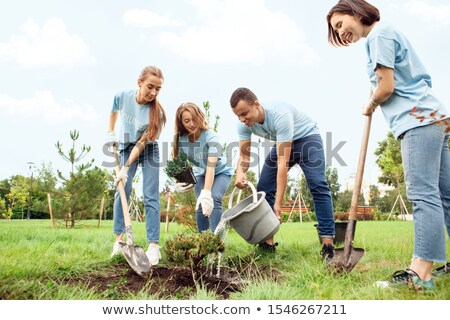 boy and girl pour on  planted tree Stock photo © Paha_L