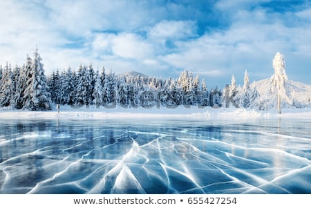 Winter landscape with frozen lake and sunset sky Stock photo © Fesus