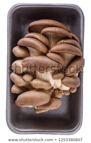 Friss ehető gomba teljes alakos egy fehér háttér Stock fotó © Digifoodstock