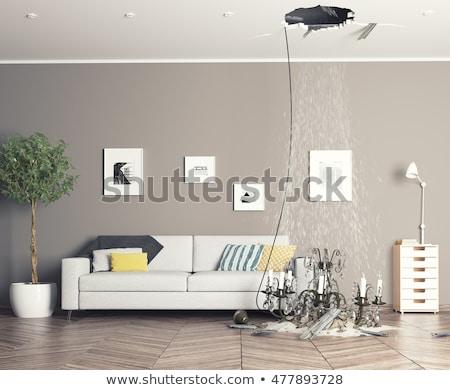 Broken Home Stock photo © Lightsource