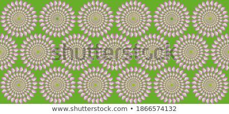Optische wielen ingesteld kleur bloem Stockfoto © alekup