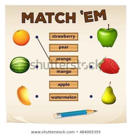 Accoppiamento gioco fresche frutti illustrazione sfondo Foto d'archivio © bluering