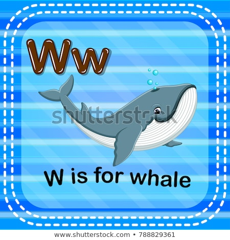 Flashcard letter W is for wildlife Stock photo © bluering