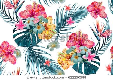 Naturale modello di fiore design vettore illustrazione Foto d'archivio © SArts