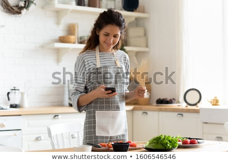 kitchen devices and apron Stock photo © artjazz