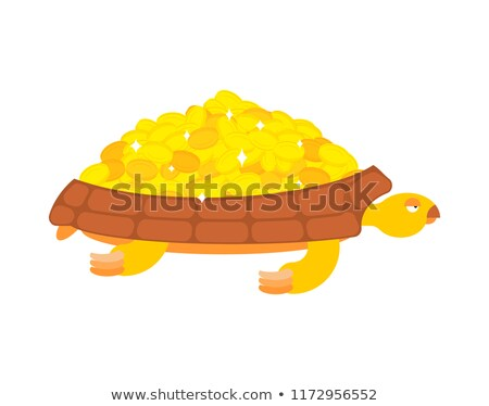 Golden Turtle carries gold coins. Jewels on a shell Stock photo © popaukropa