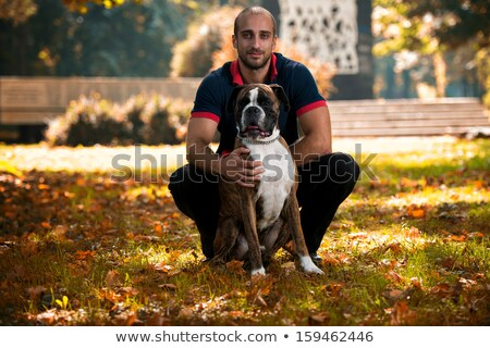 Portrait of man boxer holding Stock photo © deandrobot