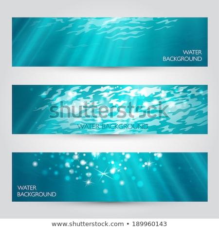Coleção água piscina banners azul Foto stock © orson