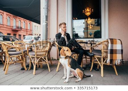 Foto stock: Homem · cão · posando · rua · treinamento · primavera